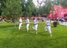 ITFK karate-do Uzbekistan Cup starts today