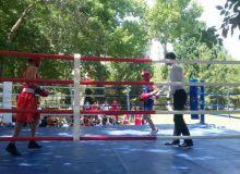 Боксеры выступили с мастер-классами и показательными выступлениями
