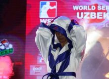 Uzbek Tigers to withdraw from World Series of Boxing