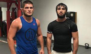 Хабиб, Зубайра ва Абубакр UFCга қачон қайтишади?