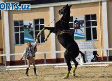 В Ташкенте прошёл открытый чемпионат по конным скачкам (Фото)