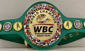 Самарқандда супер муайтай кечаси ўтказилади. Марказий жанг WBC Muaythai чемпионлик камари учун бўлади