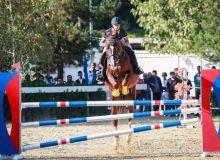 В Ташкенте прошло международное соревнование по конному спорту