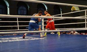«Кубок Губернатора»: Наши чемпионы мира выйдут на ринг