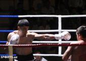 андижон бокс