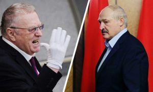 Жириновский: Лукашенко бутун Ер юзи устидан куляпти