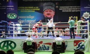 Наши боксёры продолжают побеждать на турнире в Грозном