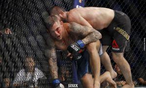 UFC юлдузлари бокс қоидалари асосида жанг қилиши мумкин