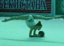 Федерация гимнастики Узбекистана оценена на самом высоком уровне