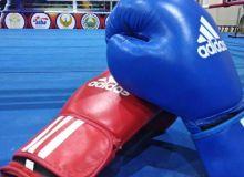 В Самарканде стартовал чемпионат Узбекистана по боксу среди взрослых
