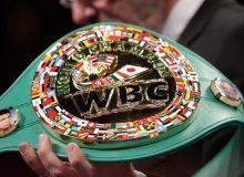 WBC янгиланган рейтингида бир қатор ўзбекистонлик боксчилар юқорилади