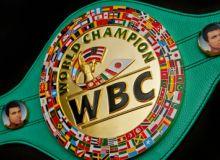 WBC янгиланган рейтингида 8 нафар ўзбекистонлик боксчи жой олди ёхуд илк бора Ҳасанбой Дўсматов ҳам пайдо бўлди