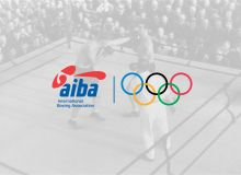 AIBA Congress 2020 summary: the new President and Constitution