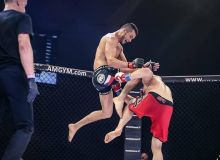 Mixed Martial Arts Federation to be established in Uzbekistan