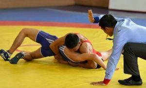 В Кубке Узбекистана по спортивной борьбе сегодня выступят вольники