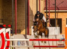 В Узбекистане проходит «FEI World Jumping Challenge» по конкуру