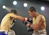 Бокс хонабод