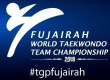 Наши таэквондисты будут бороться за медали командного кубка мира