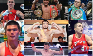 Who do fans want our professional boxers to fight? (questionnaire)