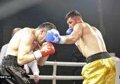 Бокс хонабод 2