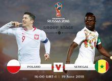 Польша - Сенегал. Онлайн трансляция (фото)