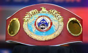 Какое место занимают узбекские боксёры в мировом рейтинге?