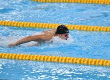 Наши пловцы примут участие в соревнованиях кубка Мира