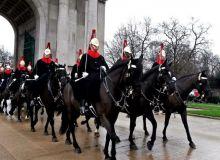 Под эгидой НОК в Ташкенте пройдет первый флешмоб конной индустрии