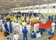 Около 600 дзюдоистов принимают участие в международном УТС