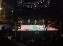 Профессионал бокс бўйича йил якунига қадар ўтказиладиган супер жанглар билан танишинг!