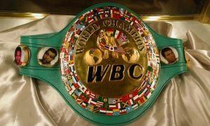 WBC рейтинги янгиланди. Ўзбек боксчилари қайси ўринларда?