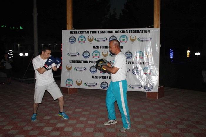Pro boxing 3