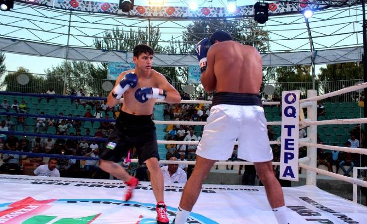 Pro boxing 6