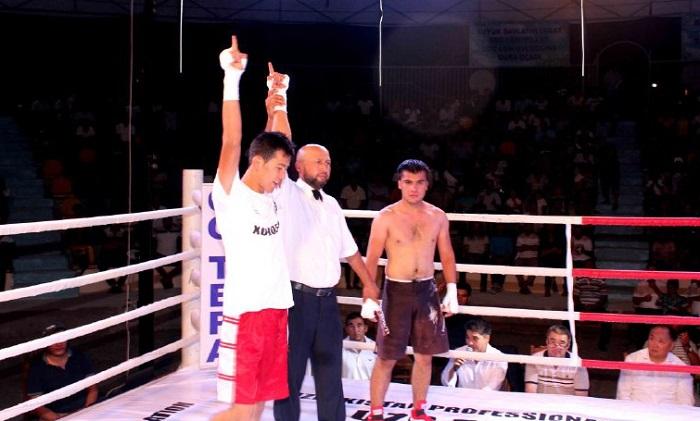 Pro boxing 8