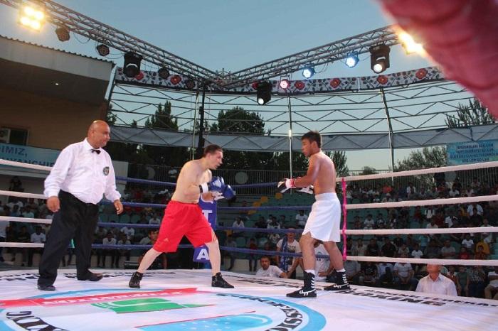 Pro boxing 9